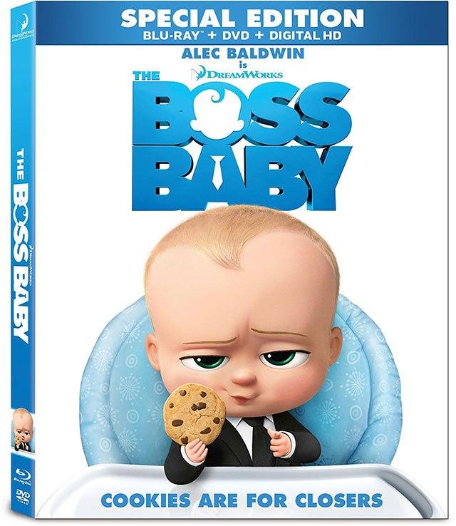 Adult Dvd Download 4